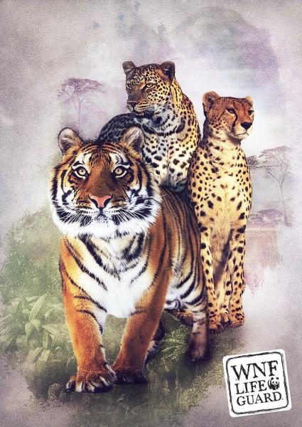 WNF-LifeGuard poster design by Maarten Kleyne